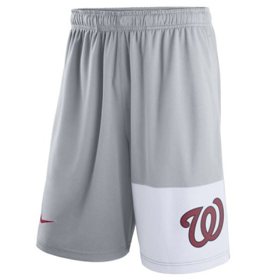 Men's Washington Nationals Nike Gray Dry Fly Shorts