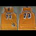 NBA Lakers 73 Dennis Rodman Yellow Hardwood Classics Men Jersey